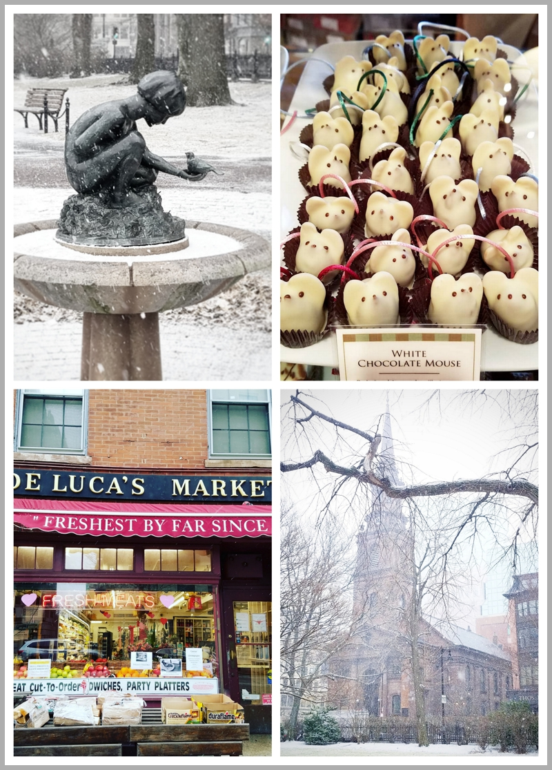 Boston Public Garden, L.A. Burdick's Chocolate Mice Truffles, DeLuca's Deli on Charles St, Churches of Boston