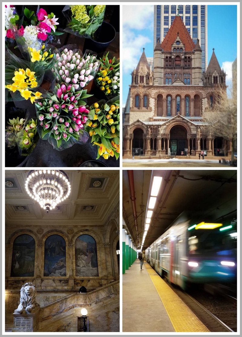 Flowers at the Boston T train station, Trinity Church in Back Bay, the Boston Public Library, the Boston T train